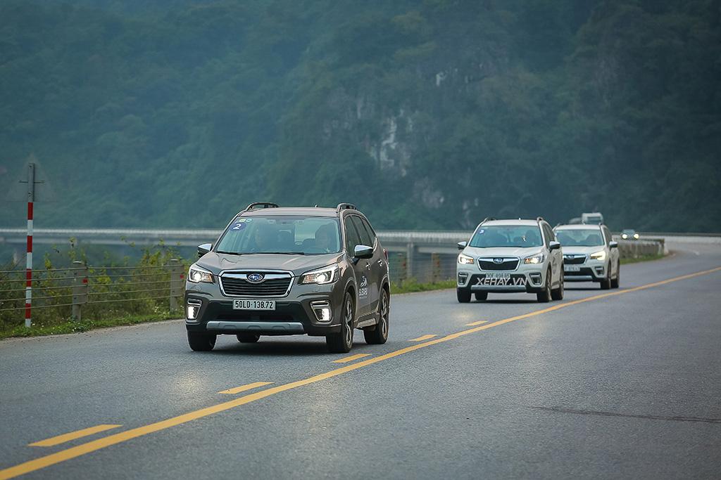 Dàn xe Subaru Forester thử nghiệm vận hành đường trường